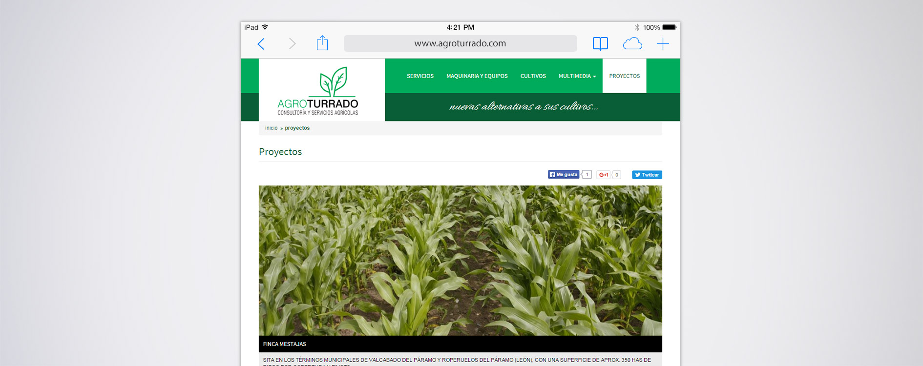 Agroturrado Consultoria y Servicios Agrícolas